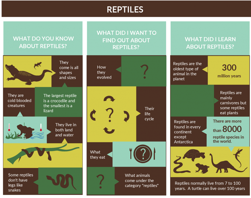 KWL Chart Template on Reptiles