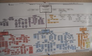 Organizational chart best practices can help you overcome complex org charts like these