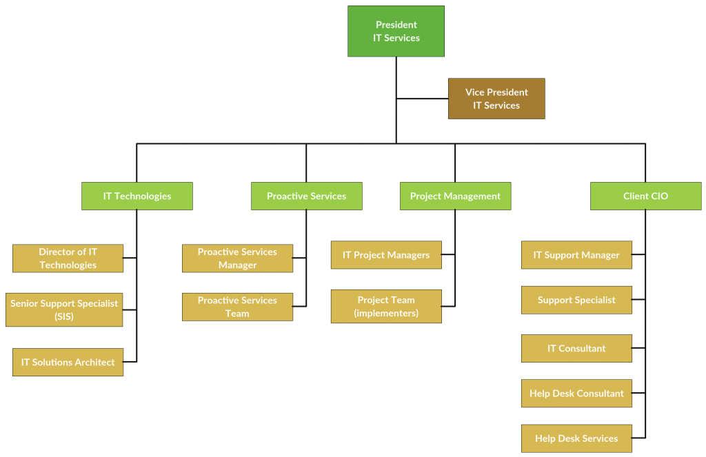 Org Chart Template for IT company