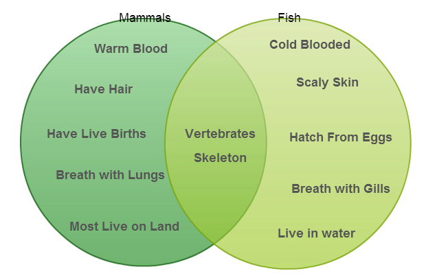 How to determine which diagram to use for various scenarios comparison venn diagram ccuart Images
