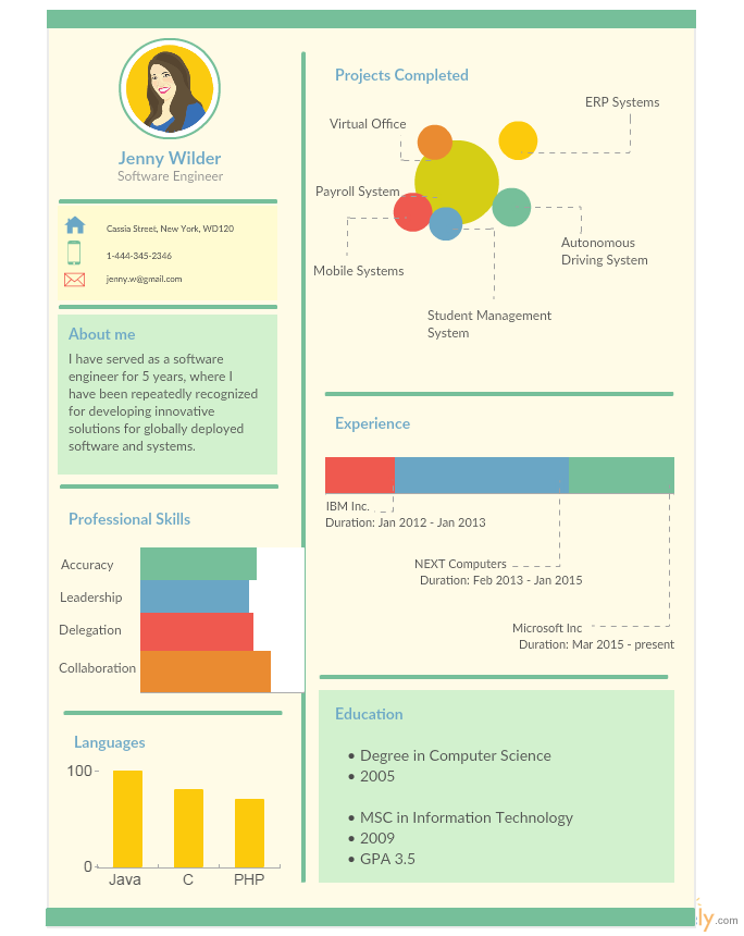 Infographic Resumes visme infographic resume Infographic Resume Templates For Software Engineers