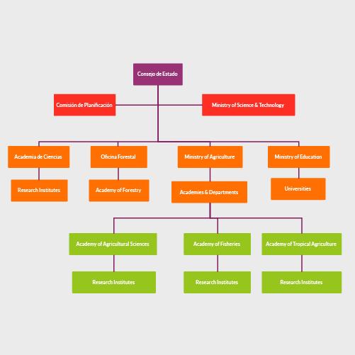 Estructura del Consejo de Estado