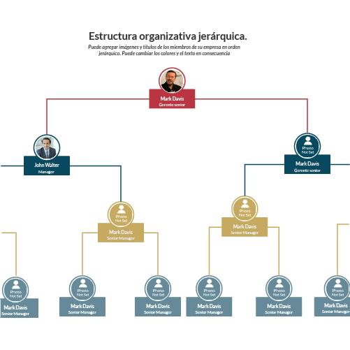 Estructura organizativa jerárquica