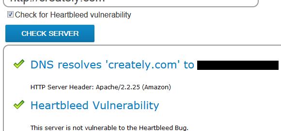 heart bleed vulnerability test