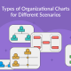 Types of Organizational Charts (Organizational Structure Types) for Different Scenarios
