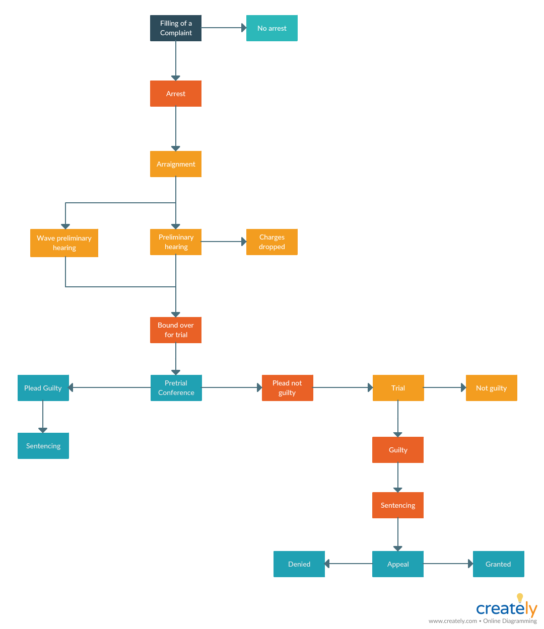Criminal Case Process Map