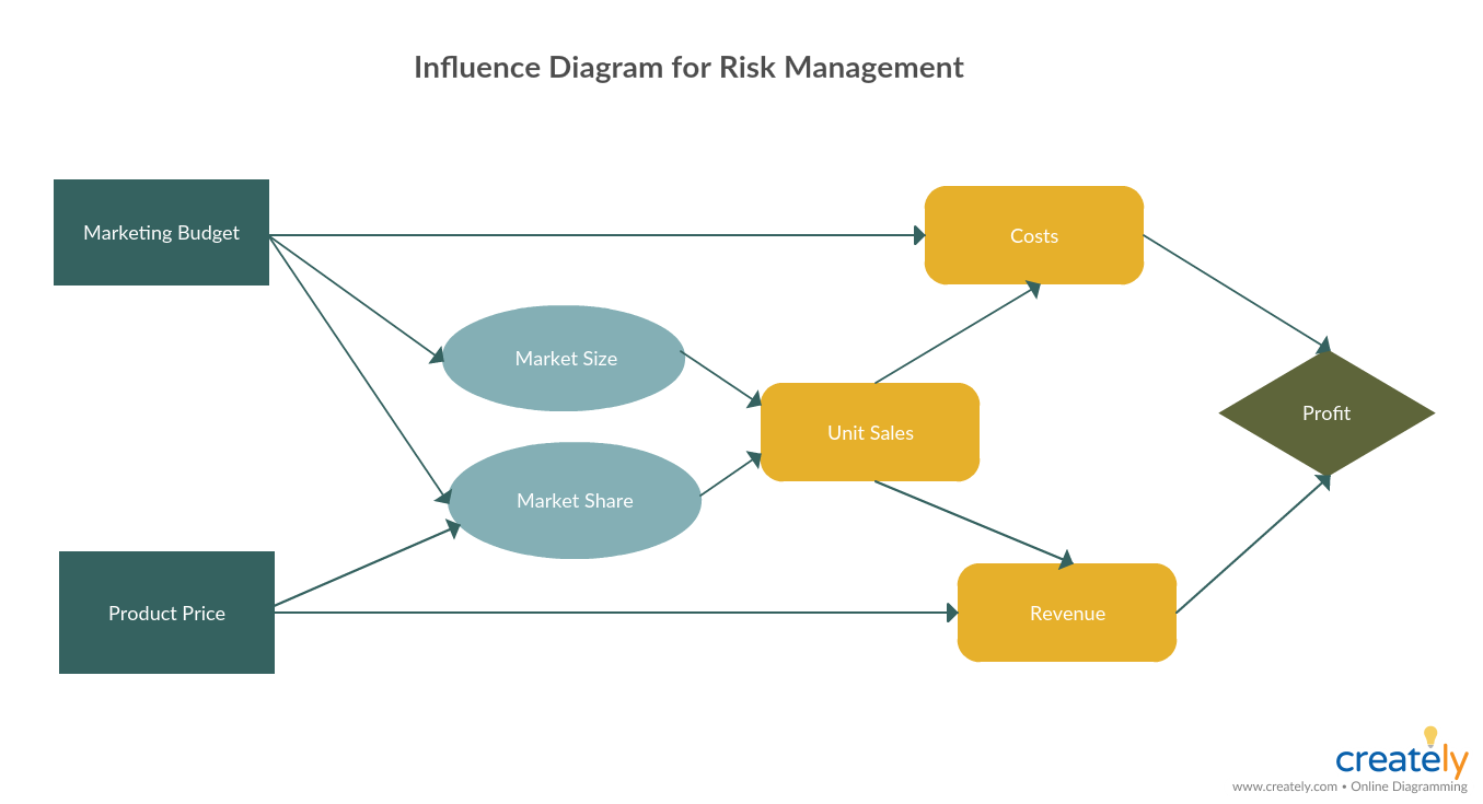 Influence Diagram for Risk Management