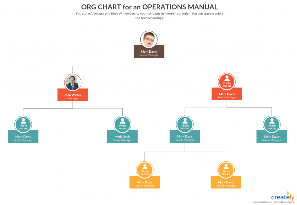 Organizational chart for an Operations Manual - how to create an operations manual