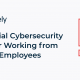 Essential Cybersecurity Tips for Working from Home Employees